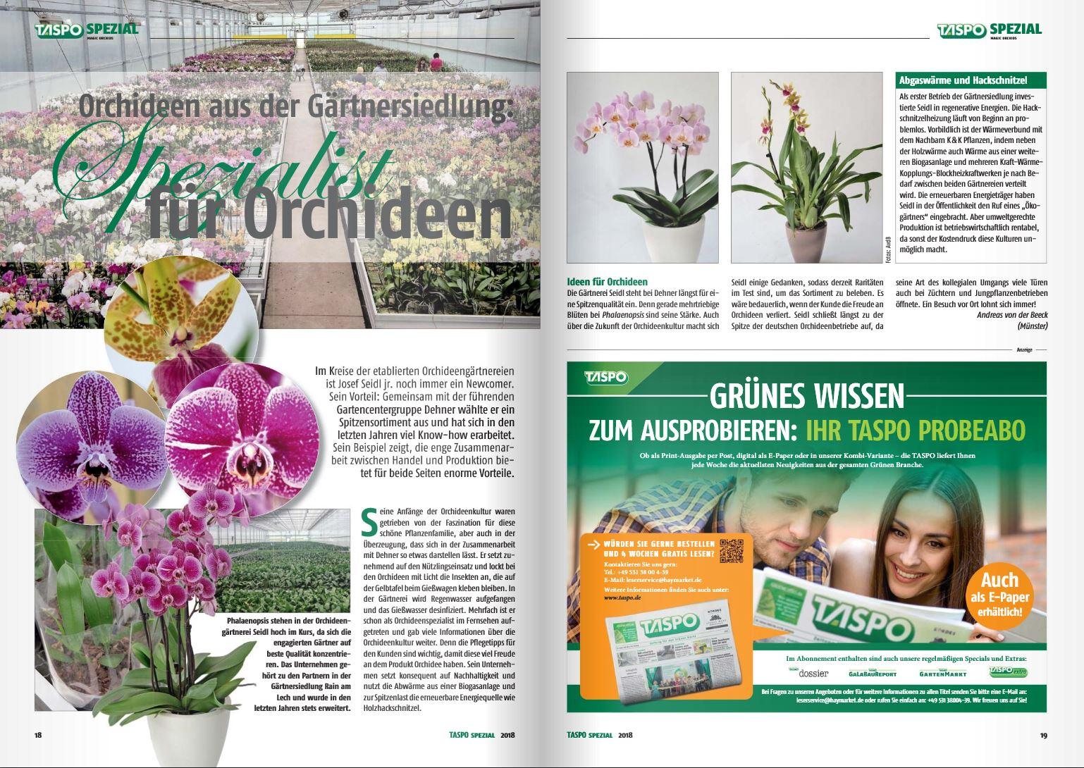 2018-08-31 Taspo Spezial Orchideen