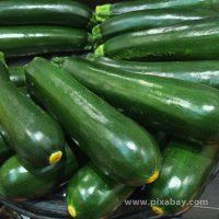 Cucurbita pepo Zucchini Beitragsbild