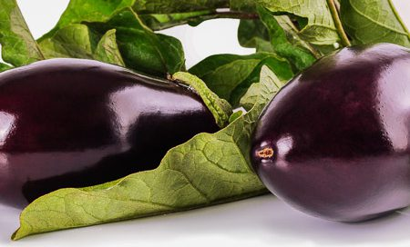 Solanum melongena Aubergine Beitragsbild